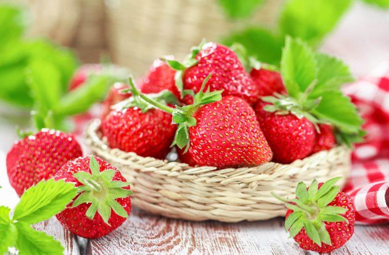 Erdbeeren Albertushof
